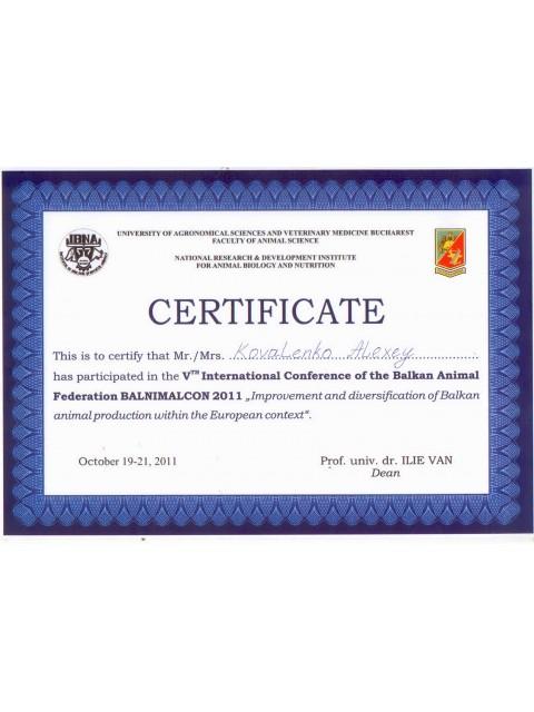 sertifikat_22